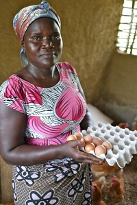 "Whenwu Lewis is the contact person between Glozon Community and PNO, the organization that is running the egg production with the support of Finn Church Aid. ""For the start we got training in how to take care of the hens,"" Lewis tells. Every small-scale egg producer now earns 30–40 euros per month. In Liberia it is a significant amount of money, and for these women it really does make a difference. Photo: Ulla Tarkka"