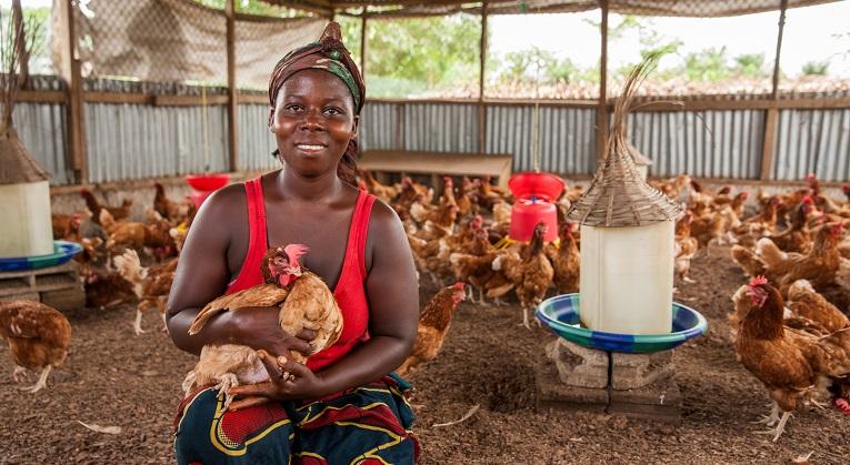 Cecelia Zangar, 24, työskentelee Mambahnin alueella Liberian suurimmassa kanalassa, jonka toimintaa on Kirkon Ulkomaanapu tukee. Kuva: Jari Kivelä