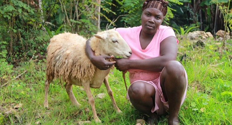 Roselène Riviene, 35, oli paperiton siirtolainen Dominikaanisessa tasavallassa, ennen kun hän sai Kirkon ulkomaanavun lampaita. Kuva: Marjut Tervola