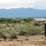 Kivääri mukanaan vuohia tai muuta karjaa paimentavat nuoret miehet ovat tavallinen näky Pohjois-Kenian maaseudulla.