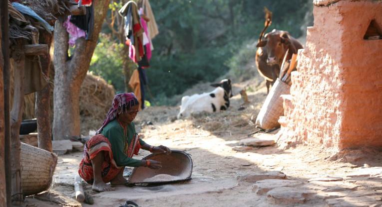 Suuri osa nepalilaisita elää karulla ja vuoristoisella maaseudulla, ja maanviljely on edelleen tärkein elinkeino. Kuva: Hannamari Shakya