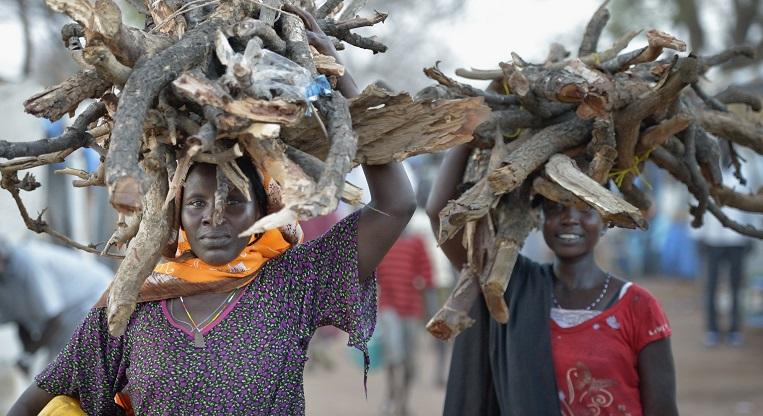 Etelä-Sudanissa naiset vastaavat usein arjen pyörittämisestä. Nämä naiset kantoivat polttopuita Ajoung Thokin pakolaislerillä viime huhtikuussa. Kuva: Paul Jeffrey