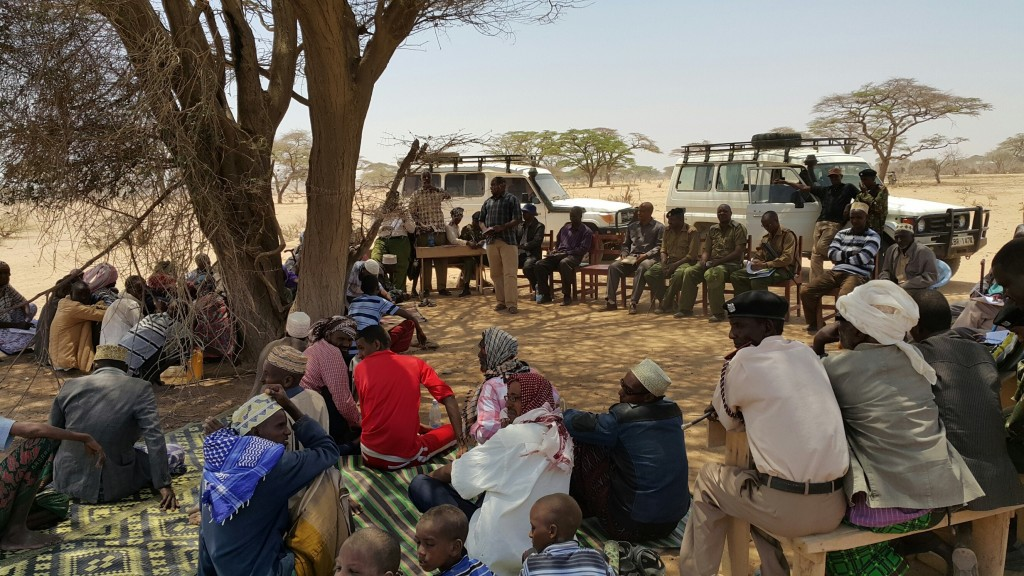 Peace negotiations often start with participants sitting under a tree and discussing common problems.