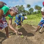 Abee Kromah, 27, osallistuu Kirkon Ulkomaanavun järjestämään viljely kouluun Liberian Gran Cape Mountissa. Hän aikoo käyttää oppejaan oman viljelmän perustamiseen. Nyt viiden lapsen yksinhuoltaja elättää perheensä kassavatilkulla ja pyykkäämällä ihmisten vaatteita purolla.
