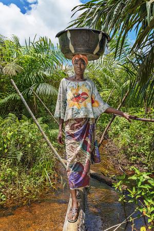 Gohnin kylässä ainoa reitti viljelykoulun pellolle kulkee puron päälle rakennettua pitkospuuta pitkin. Myös sato pellolta kotiin ja myyntiin kuljetetaan tätä kautta. Kuva: Ville Palonen.
