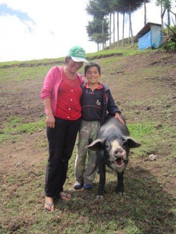 Äiti, poika ja sika.