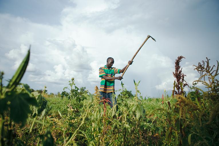Wani Garanep har på Kyrkans Utlandshjälps kurs lärt sig hur man brukar jorden. Nu växer det bland annat sesam, okra och tomater bredvid familjens lerhydda.