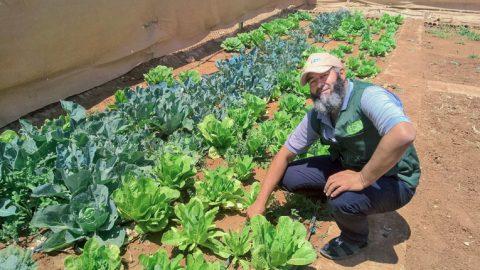 Abu Hashem esittelee ylpeänä Kirkon Ulkomaanavun koulutuskeskuksen puutarhaa.