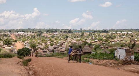 Kaksi poikaa kuljettaa pyörän selässä puupölkkyjä tietä pitkin kohti aluetta, jolla on kymmeniä olkikattoisia majoja.