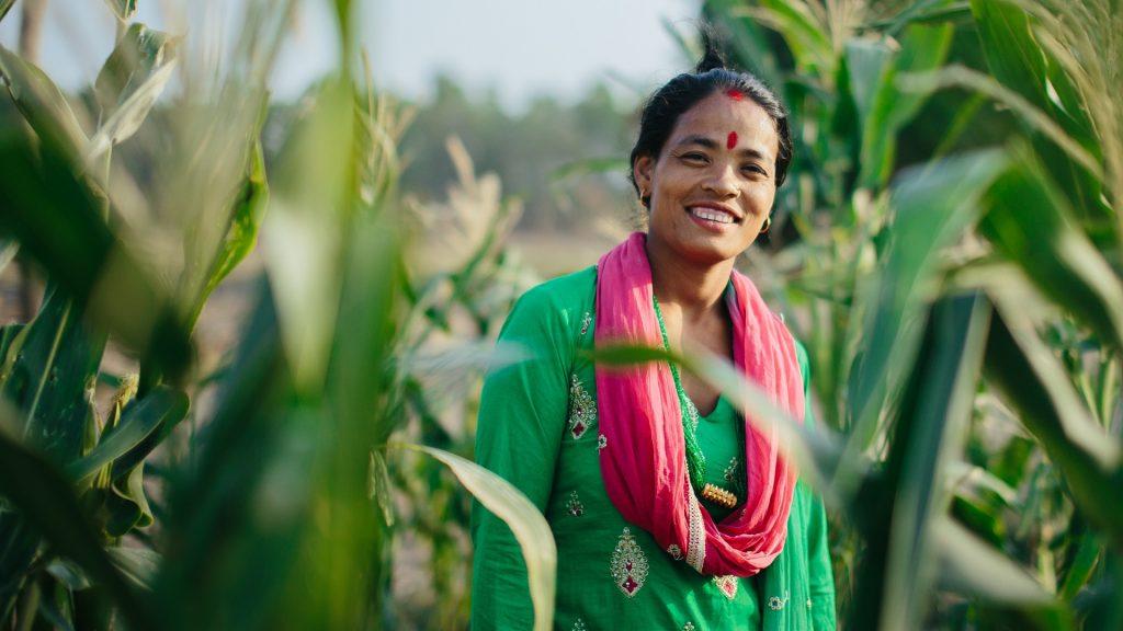 Nainen hymyilee maissipellolla.
