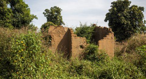 Kivitalon raunio, ympärillä kasvaa runsaasti kasvillisuutta.