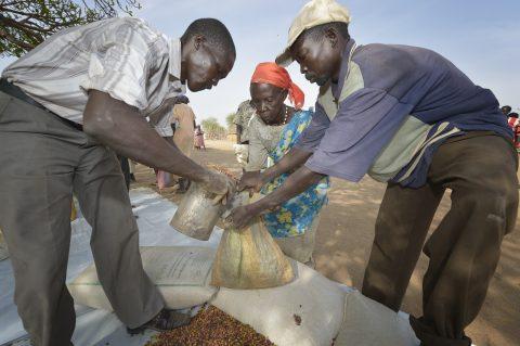 Humanitaarisen avun päivä: Ilmastonmuutos uhkaa ylikuormittaa humanitaarista sektoria